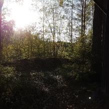 utsikt från stugan